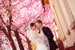 Bride and groom in spring time wedding Stock Photo
