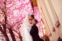 Bride and groom in spring time wedding Royalty Free Stock Image