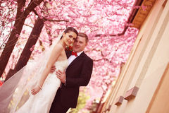 Bride and groom in spring time wedding Stock Photography