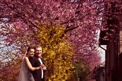 Bride and groom in spring time wedding Stock Image
