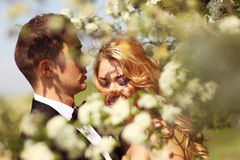 Bride and groom in springtime Stock Images