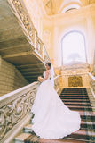 Bride and groom in stairs Stock Photo