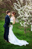 Bride and groom stand near a flowering tree in spring garden Royalty Free Stock Photos