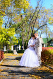 The bride and groom standing on autumn mall. Newly-married couple on the autumn avenue. Embrace and look aside Stock Photography