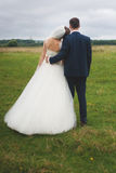 Bride and groom standing back on the green field Stock Photo