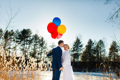 Bride and groom are standing near the frozen lake Stock Image