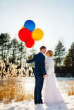 Bride and groom are standing near the frozen lake Stock Images