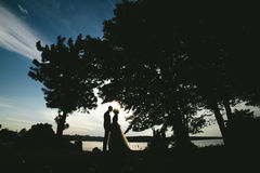 Bride groom standing in the park stock photography