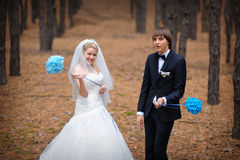 Bride and groom standing in a pine forest in autumn Royalty Free Stock Photos