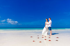 Bride and Groom standing on tropical beach shore with red starfish in the sand royalty free stock image