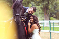 Bride and groom at stud black horse Stock Images