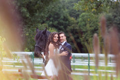 Bride and groom at stud black horse Royalty Free Stock Photography