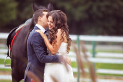 Bride and groom at stud black horse Stock Photos