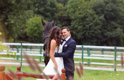 Bride and groom at stud black horse Stock Photo