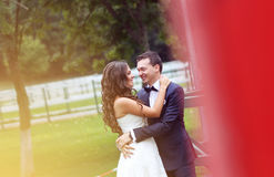 Bride and groom at stud black horse Royalty Free Stock Image