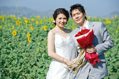 Bride and groom on sunflower field Royalty Free Stock Photo
