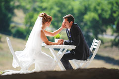 Bride and Groom  in Sunlight. Bride touching groom`s face in sunlight Stock Photos