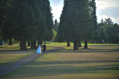 Bride and groom on a sunlit lawn stock images