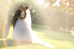 Bride and Groom surrounding by natural golden sunlight Royalty Free Stock Images