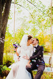 The bride and groom on a swing and flying bubbles Royalty Free Stock Photography