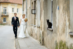Bride and groom taking a walk Stock Photos