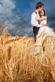Bride and groom in tender hugs in wheat field with dramatic sky Stock Image
