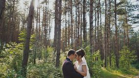 The bride and groom tenderly embrace each other among the pines in the forest. The sun. Wedding day. Moments of stock footage