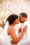 Bride and groom on their wedding day. Royalty Free Stock Photos