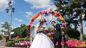 The bride and groom throw the doves. Super video. Great Footage HD stock video