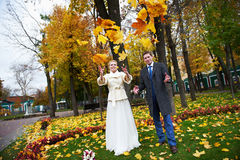 Bride and groom throw maple leaves Stock Image