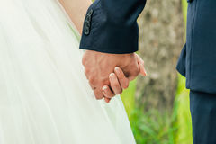 Bride and groom to hold hands Stock Photo