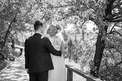 Bride and Groom About to Kiss Standing Under Tree stock images