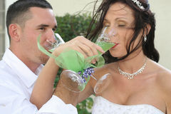 Bride and groom toast. Shot of a bride and groom toast Royalty Free Stock Images