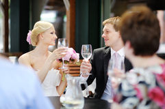 Bride and groom toasting Royalty Free Stock Photo
