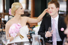 Bride and groom toasting Stock Photography