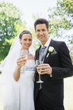 Bride and groom toasting champagne Stock Image