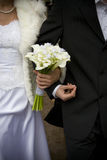 Bride and groom together. Groom and his bride walking together Royalty Free Stock Photo