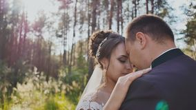 The bride and groom together in a dance among the pine trees in the forest in the sun. Wedding day. Moments of happiness. And love stock video footage
