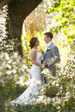 Bride and groom together in the garden Stock Photography