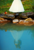 Bride and groom together in landscape by a lake reflected on water surface - romantic wedding concept. Royalty Free Stock Photography