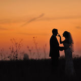 Bride and groom together. Stock Image