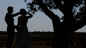 Bride and Groom under a Large Tree.  stock footage