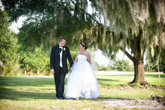 Bride and Groom under tree Royalty Free Stock Image