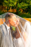 Bride and Groom Under Veil Stock Photos