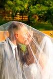 Bride and Groom Under Veil Stock Photos
