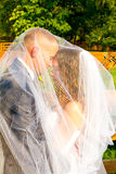 Bride and Groom Under Veil Royalty Free Stock Photography
