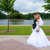 The bride and groom for a walk. The bride and groom walk around the lake framed by trees Stock Images