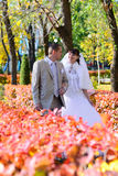 The bride and groom walk on autumn mall. Newlyweds are at the mall and look at each other. Autumn Stock Images