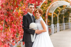 Bride and Groom on walk Royalty Free Stock Photo