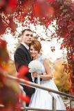 Bride and Groom on walk Royalty Free Stock Photography